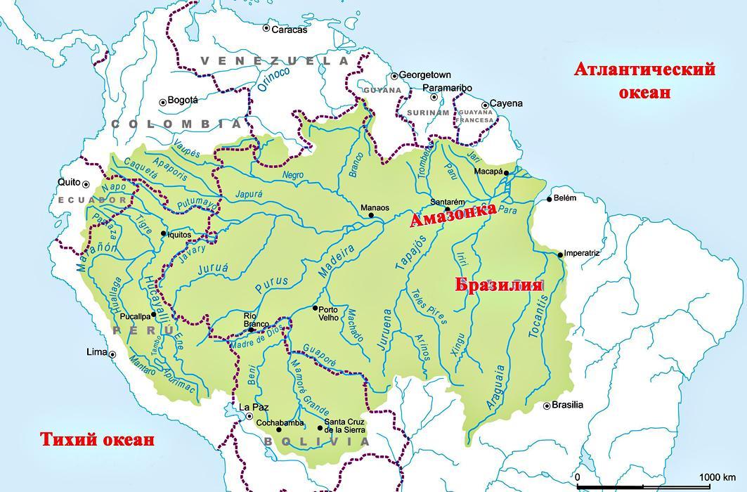 река амазонка картинки на карте якобы завел неопытного