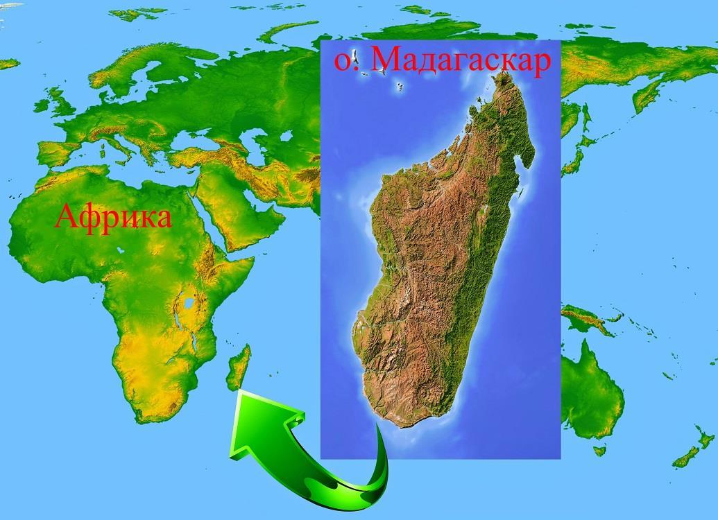 Остров Мадагаскар и самое важное о нем