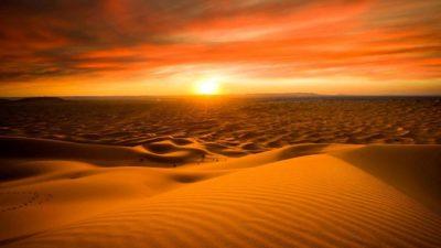 Пустыни мира список